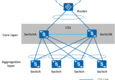 switch_router_css_crs